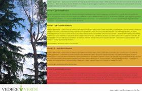 vta-analisi-stabilita-alberi-7